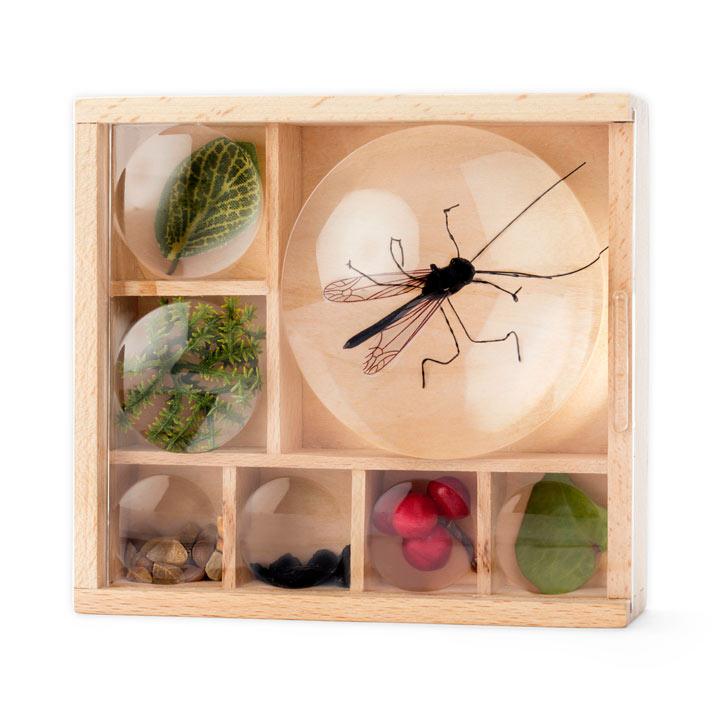 Bug Box / Du...